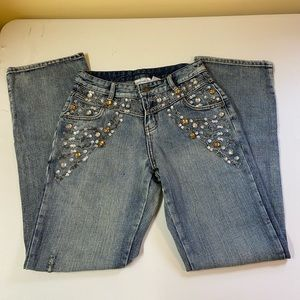 Vintage Jeanology Jeans, Embroidered, Gems and Seq